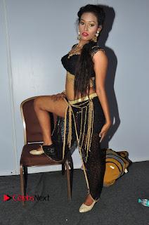 Actress Dancer Nisha Pictures at Janatha Garge Sucess Meet  0070.JPG