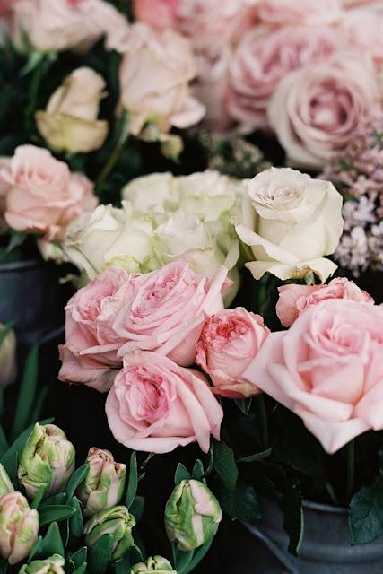 Roses-photo-vanessa-jackman