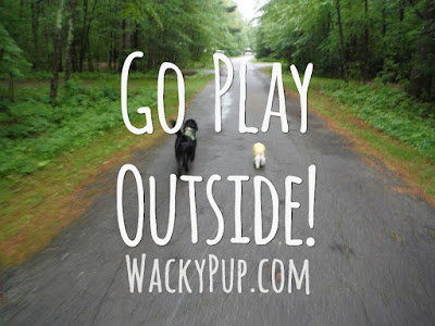 Go Play Outside! Wacky Pup WackyPup