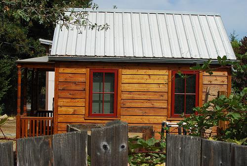 SAINT BERNARD House//Home Window//Door//Porch Printed Sticker BEWARE I LIVE HERE