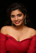 Bindhu latest sizzling photo gallery-thumbnail-2