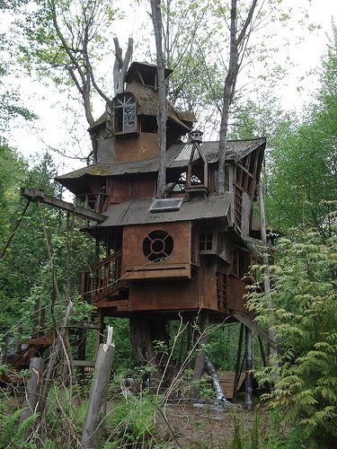 Nhà trên cây đẹp