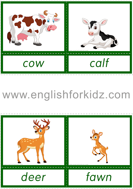 Printable flashcards to learn animals and their babies
