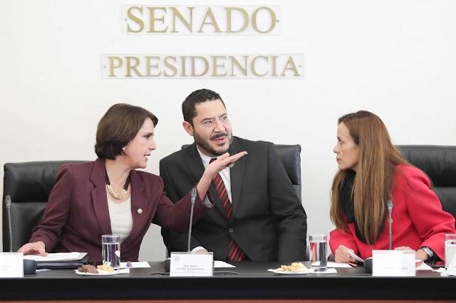Impulsan senadores y organizaciones civiles Ley de Seguridad Vial