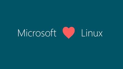 Microsoft, Linux Vakfına Katıldı. Peki Neden?