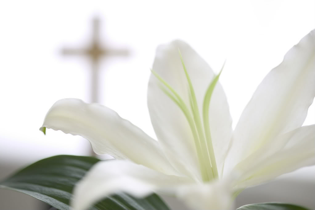 Are you ready for some Easter backgrounds for your desktop Easter Cross Background