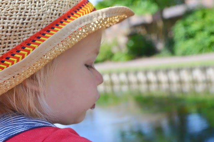 feeding the ducks, baby in fedora