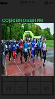 на старте спортсмены готовы соревноваться в беге на дистанции