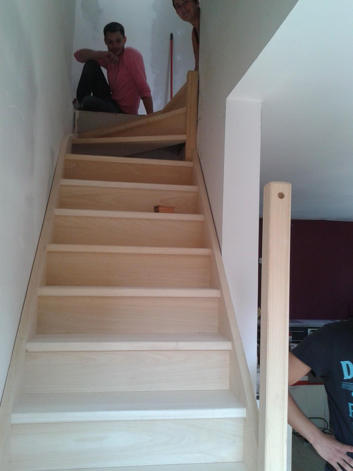 le blog de super castor j173 j174 l 39 escalier est mont. Black Bedroom Furniture Sets. Home Design Ideas