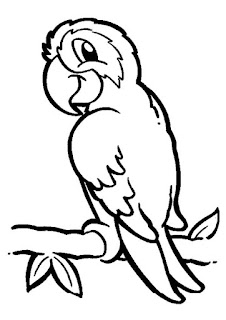 Printable King Cockatoo - Coloring Sheet