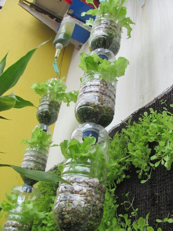 [Guide] Cara Berkebun dan Bercocok Tanam di MInecraft Untuk...