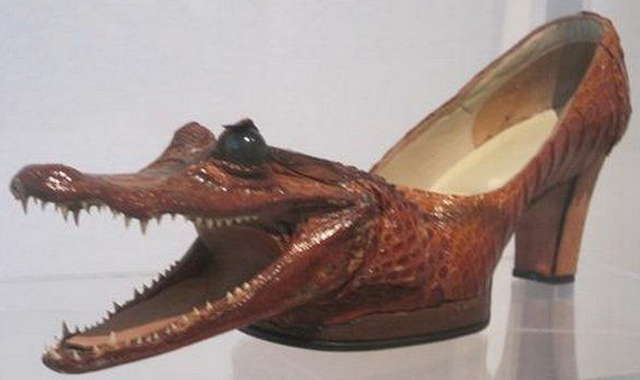 crocodile shoes women