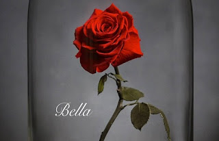 Trandafirul din Frumoasa si bestia