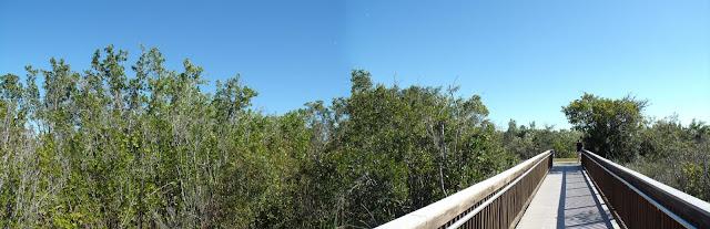 Pasarela para acceder al Marsh Trail en el Ten Thousand Islands NWR