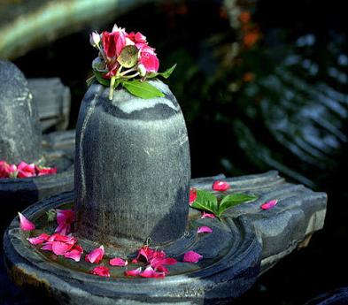 Bhavishyafal Janm Tithi