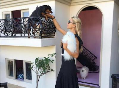Una mansión para perros de 325.000 dólares