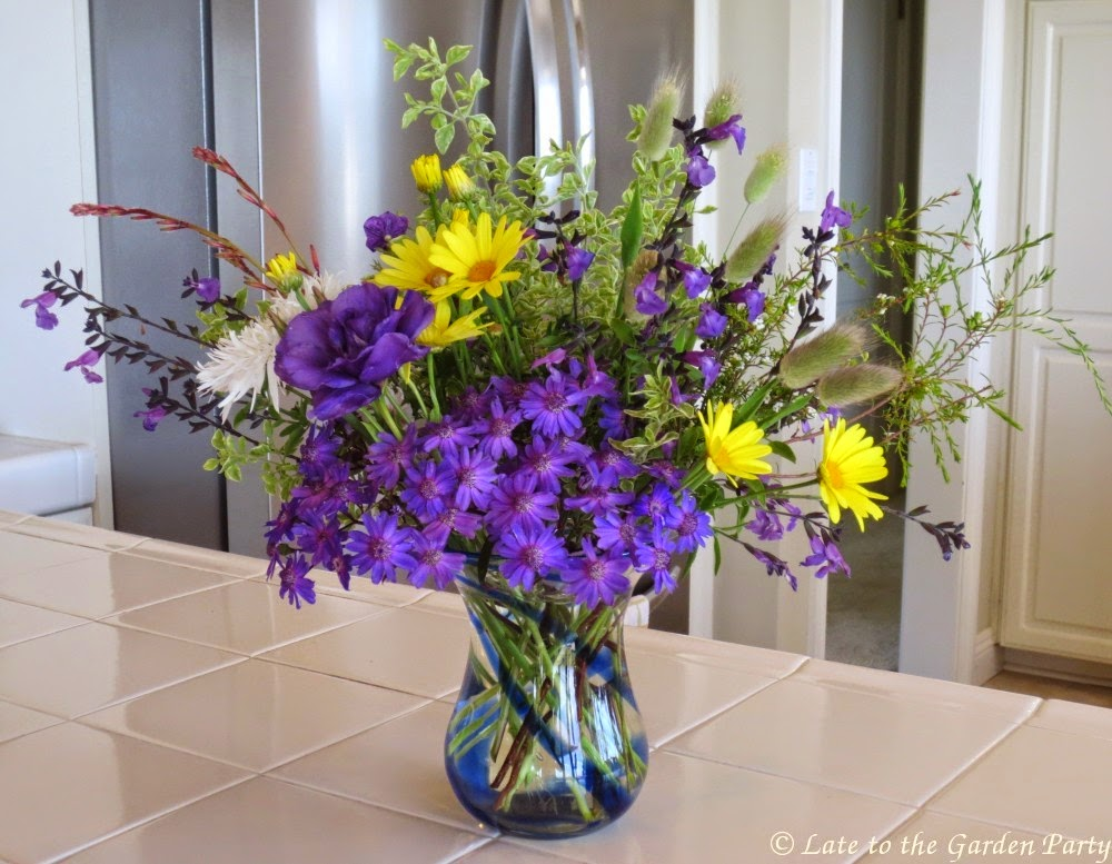 Late To The Garden Party In A Vase Monday Morning Blues