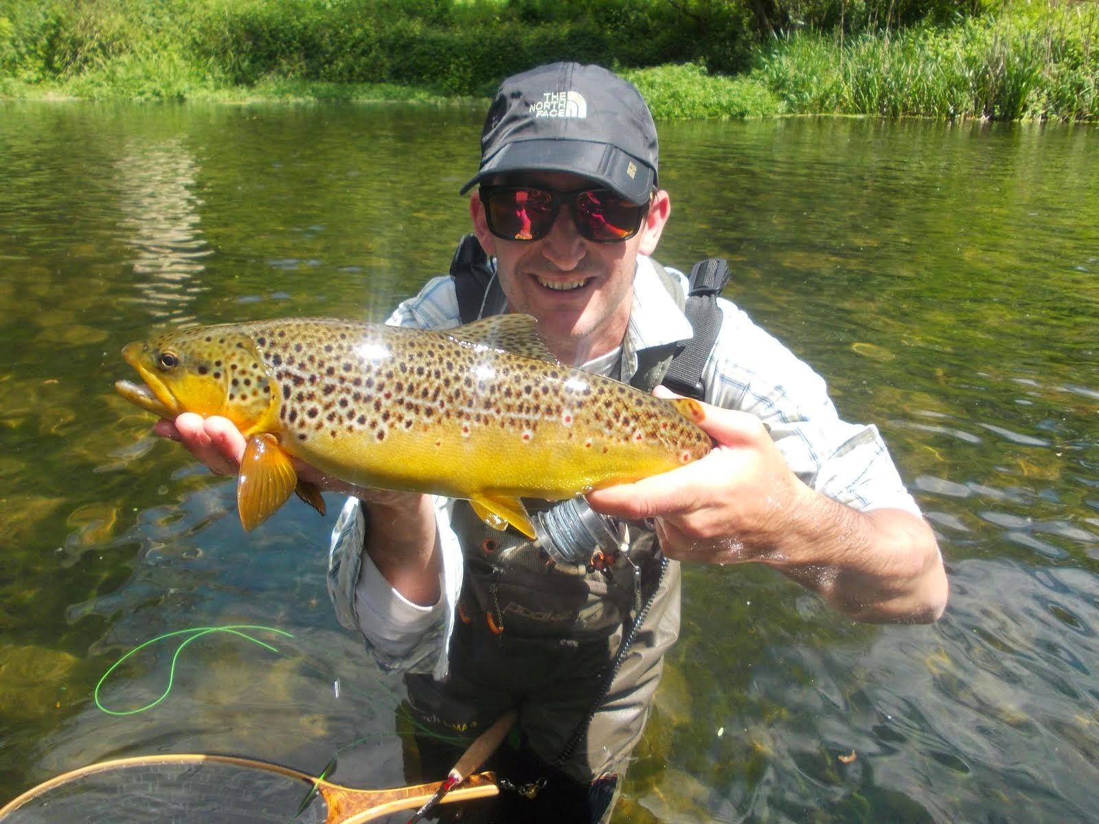Rubinsteinfishing el blog de pesca de ferran oliva i poch for Como criar truchas en estanques