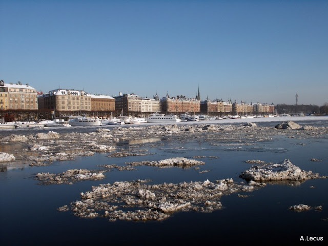 Российский сельчанин: В Стокгольме - ужасающая грязь, бедность и мигранты