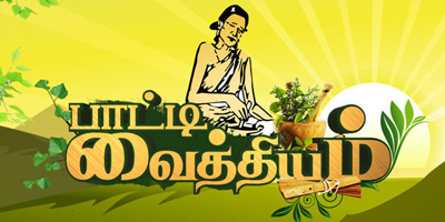 Watch Paati Vaithiyam Special Show 23rd February 2016 Vijay Tv 23-02-2016 Full Program Show Youtube HD Watch Online Free Download