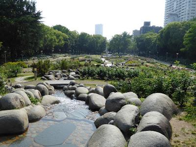 靭公園バラ園 川
