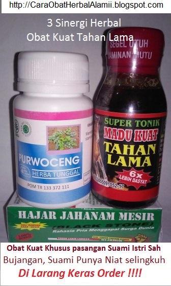 obat herbal tradisional cara alami agar pria kuat tahan lama dg