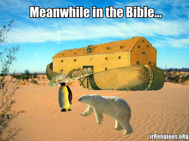 Funny polar bear penguin desert noah's ark cartoon joke picture meme