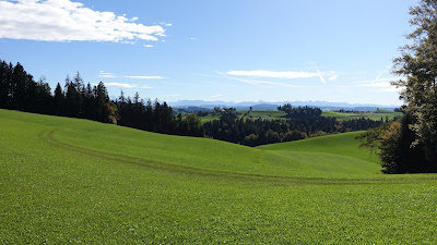 Blick beim Guggli zu den Alpen