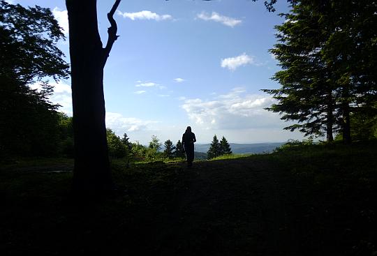 Widoki z rozstaju szlaków pod Cuplem.
