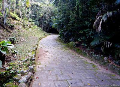 Teresópolis - Trilha do Parque Nacional da Serra dos Órgãos