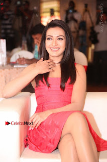 Actress Catherine Tresa Unveils Intex Air Conditioners  0085.jpg