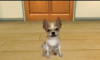 Download Petz My Pupppy Family PSP PPSSPP