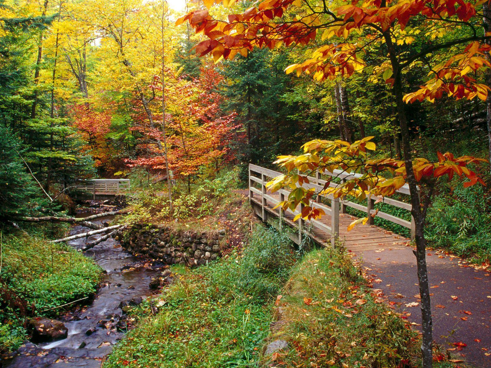 fall october autumn falls scenery pumpkin colors