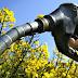 La producción de biodiésel creció 37,4% en el segundo trimestre (DiarioBae)