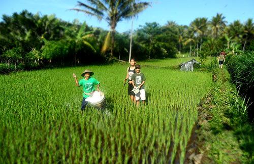 Agriculture nuances