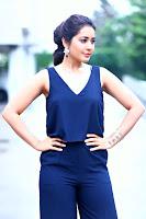 Rashi Khanna Stylish Photo Shoot HeyAndhra