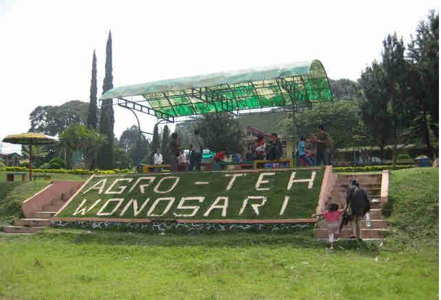 37 Daerah Wisata Alam Pemandian Alam Jawa Timur