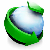 Internet Download Manager 2018 Version 6.31 Build 2 Download