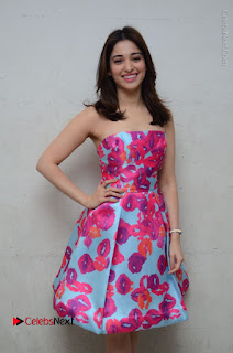 Actress Tamanna Latest Images in Floral Short Dress at Okkadochadu Movie Promotions  0058.JPG