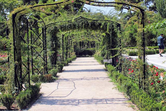גן הוורדים בפארק רטירו