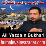 http://www.humaliwalayazadar.com/2017/10/syed-ali-yazdain-bukhari-nohay-2018.html