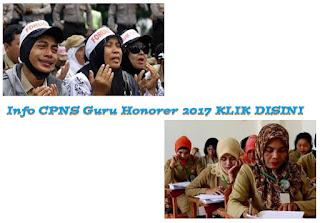 cpns guru honorer 2017