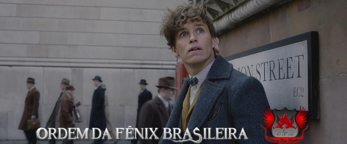 Ordem da Fênix Brasileira | Notícias, conteúdo e bastidores de Harry Potter | [Ano 10]