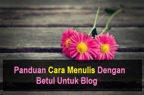 Panduan Cara Menulis Dengan Betul Untuk Blog