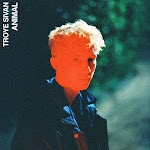 Troye Sivan - Animal - Single Cover