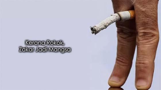 Penjelasan Bagaimana Rokok Beri Kesan Kepada Zakar