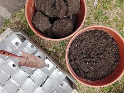 A marzo nell'orto si semina: in semenzaio.