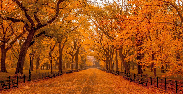 Beautiful Autumn Landscape Wallpapers