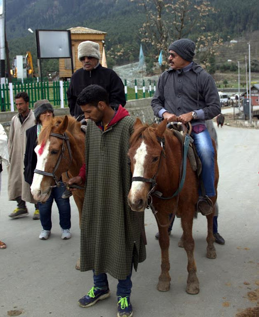 pahalgam horse riding sight seeing kashmir india