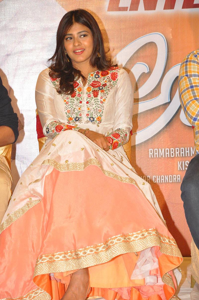 Hebah Patel at Andhhagadu Movie Success Meet Photo Gallery